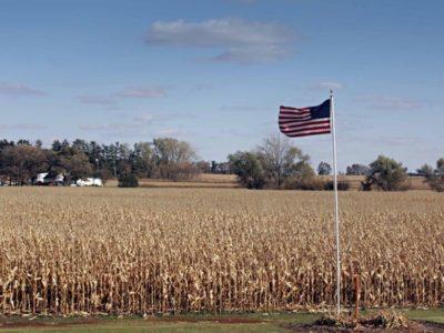 EUA vendem 345 mil toneladas  da safra 2019/20 na semana