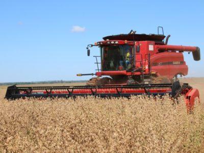 Agro sairá da crise mais competitivo, avaliam produtores e consultores