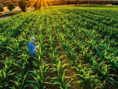 Digital Connection seleciona as mais inovadoras startups do agro