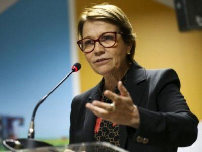Tereza Cristina destaca trabalho do  ministério para garantir abastecimento