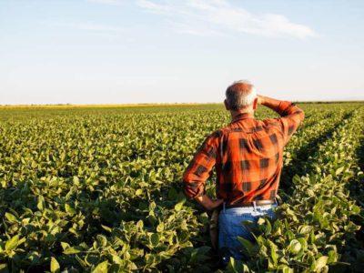 Dados do Caged mostram impactos para o agronegócio