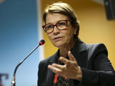 Brasil garante alimentos para consumo interno e exportações, diz ministra