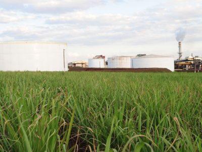 Entidades do agro defendem a inclusão dos produtores rurais na Renovabio