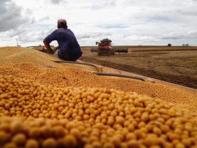 Produção de grãos deve ter recorde de 251,42 milhões de t, diz Conab