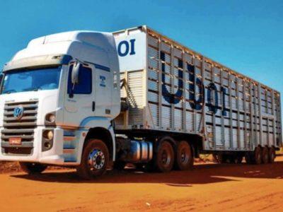 JBS lança aplicativo 'Uboi' para facilitar o transporte de gado