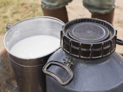 Preço do leite subiu 8% em julho e a tendência de alta deve continuar em agosto