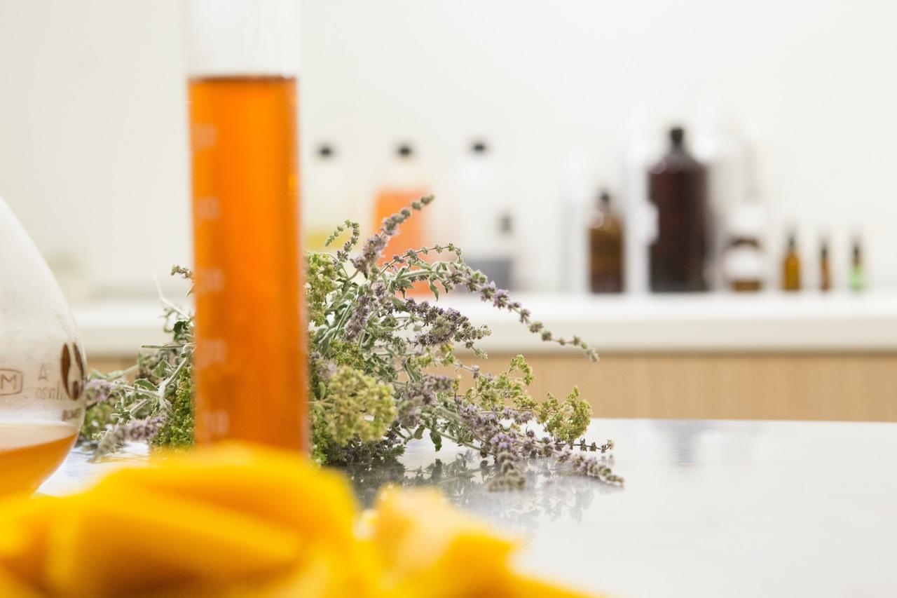 6 dicas para quem deseja começar a utilizar cosméticos orgânicos