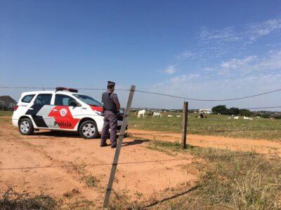 8º Baep já apreendeu 2,6 toneladas de drogas desde a sua criação, na região de Presidente Prudente