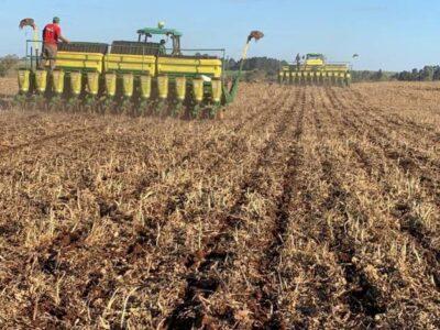 Crédito para financiar o setor rural soma R$ 73,8 bilhões em três meses do Plano Safra