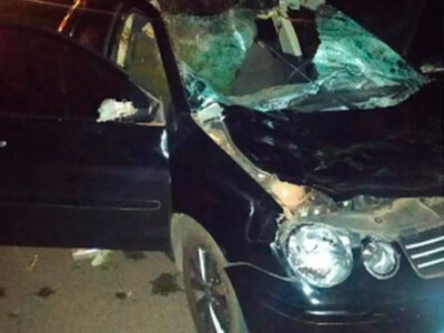 Motorista é internado após atropelar cavalo em Paraguaçu Paulista