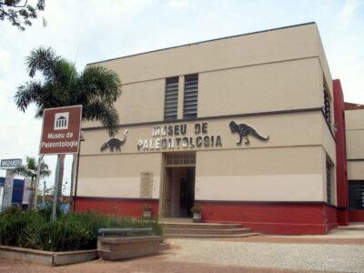 Museu de Paleontologia de Marília receberá réplicas de dinossauros