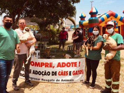 Prefeitura e BG Zangrossi retomam Feira de Doação de Animais