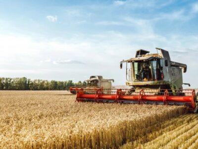 Brasil será maior exportador de grãos do mundo em cinco anos; diz Embrapa